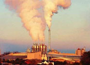 诸城市永全机械厂拙村西分厂污染环境被停产处罚
