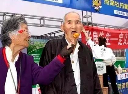 赏牡丹品美食 2017中国菏泽牡丹美食文化节开幕