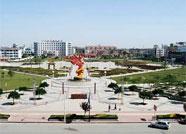 沾化区开展春季城区环境综合整治活动