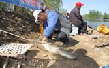 聊城举行省老年人钓鱼比赛 67岁女钓手首战告捷