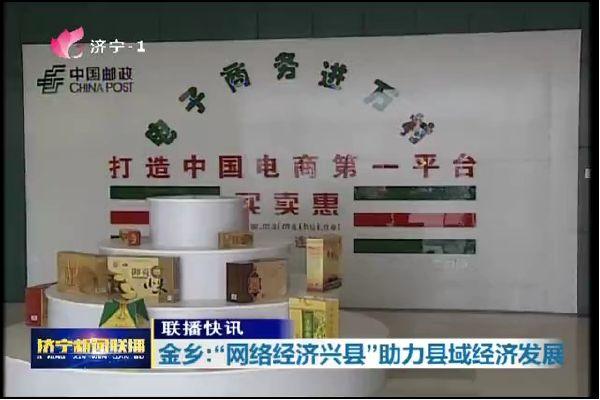 """金乡实施""""网络经济兴县""""战略 助力县域经济发展"""