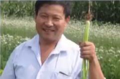 """齐鲁先锋 陈明利:""""蔬菜大王""""的""""富农梦"""""""