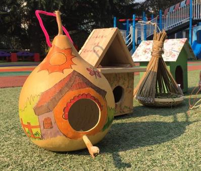 青岛数千学子发起为鸟安家行动 精心制作4200个创意鸟巢