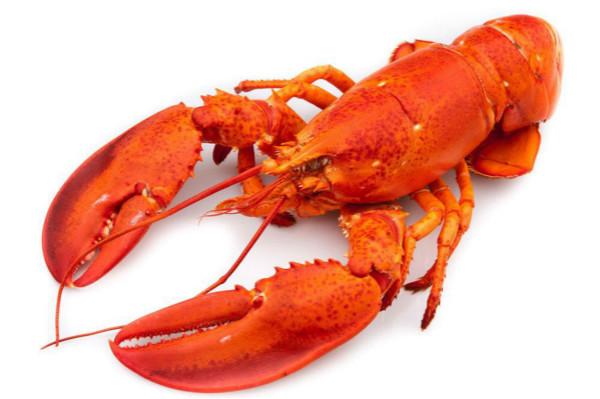 民生实验室|春江水暖鱼虾肥美,其暗藏寄生虫千万别大意