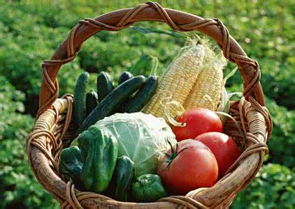 德州蛋价下调平均2.38元/斤 卷心菜降幅最大每斤0.53元