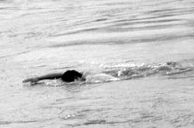 潍坊一男子海钓被推落海身亡 同船众人竟未报警