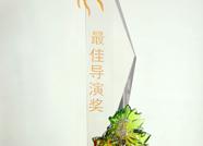 泰安市中心医院微电影获首届山东医院微电影节最佳导演奖