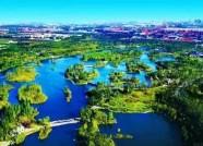 """50个单位荣膺""""潍坊市创建国家森林城市工作先进集体"""""""