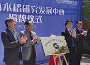 海水稻产业化国家级研究发展中心正式启用