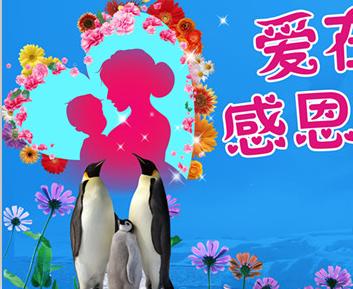 母爱情如海 青岛极地请你来:欢乐大礼献给妈妈