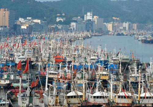 闪电指数   山东4万渔船歇网,海鲜价格最高涨五成