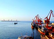 """潍坊港新开""""潍坊—印度""""外贸直航航线 提升远航能力"""