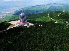 原山精神!全国绿化委、国家林业局发文向淄博市原山林场学习