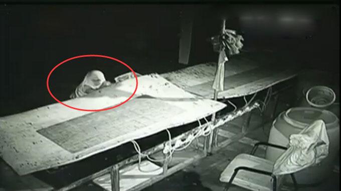 龙口一海鲜店一周两次遭窃 近两千元海鲜被盗