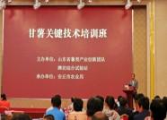 潍坊举办甘薯关键技术培训班 参训人员达150余人