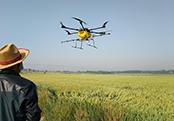费县上冶镇:无人机飞防小麦条锈病两万余亩