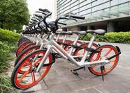 泰安确定摩拜单车为首批进驻泰城试点运营品牌