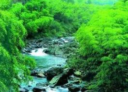 山东出台法规禁止风景名胜区人工化、商业化错位开发