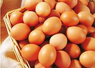 德州鸡蛋价格七周连跌 均价每斤2.25元
