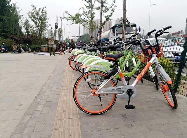 青岛:共享单车频被投诉 消保委发消费提示倡导文明绿色骑行