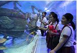 临沂:40位贫困农村娃游城里 游科技馆逛海洋世界