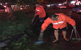 聊城市政人员冒雨清理倒伏树木 力保道路安全畅通