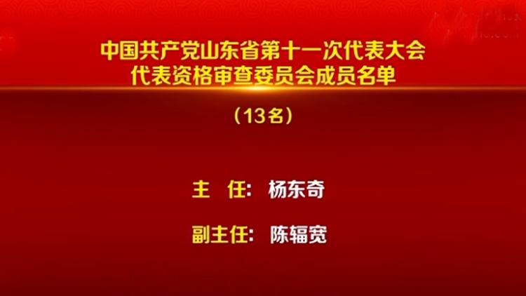 中国共产党山东省第十一次代表大会代表资格审查委员会成员名单