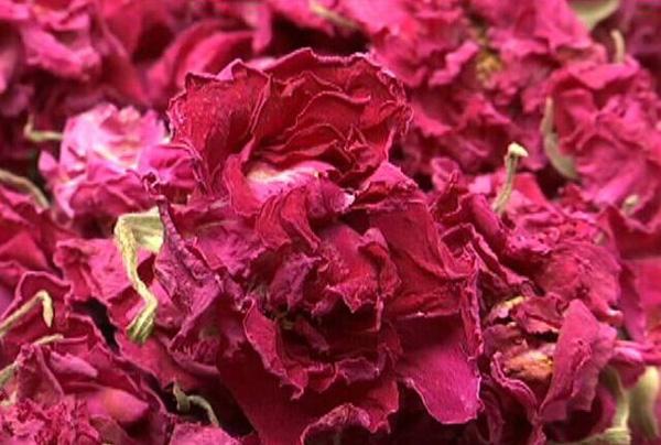 济南平阴:两千斤玫瑰花冠茶找销路