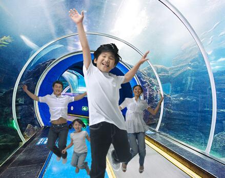 中高考结束去哪玩?快看青岛海底世界超大礼包