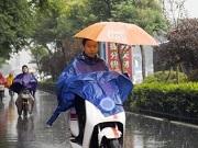 海丽气象吧丨山东8市今明有中到大雨 青烟局地将迎来大暴雨