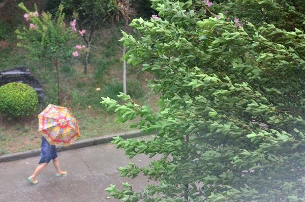 海丽气象吧丨山东发暴雨蓝色预警 预计傍晚暴雨再袭济南