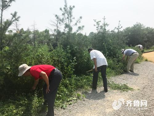 工作人员正在清理公园杂草.jpg