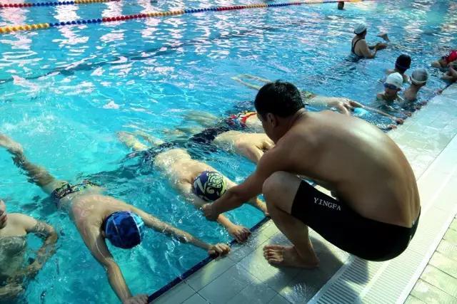 游泳进校园 菏泽千余名学生将享受免费游泳技能培训