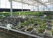 滨州北海开发区推进传统产业转型升级 为动能转换探索新路径