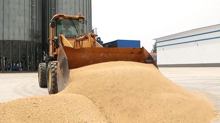山东夏粮生产再获丰收 总产470.02亿斤