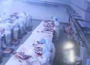 """阳信亿利源:""""互联网+肉牛""""标准化生产打造高效生态循环畜牧业"""