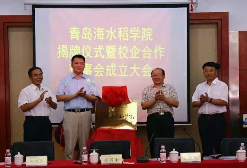 国内首个海水稻学院在青岛成立 袁隆平院士任首席教授