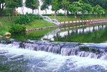 2020年山东各设区市建成区基本实现污水全收集全处理