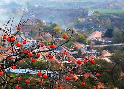 寻找最美古村落:山东这16个古村落,惊艳了全中国!