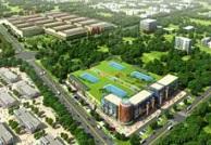 山东将重点打造一批乡镇商贸中心 培育特色商贸小镇