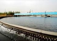 """潍坊对高耗水企业实行定额取水 逾22万方计划用水被""""砍掉"""""""
