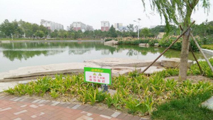 淄博三人深夜公园游玩不慎落水 中年男子挺身救人