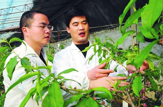 山东今年计划培育2.6万新型农民 每人补助3000元