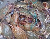 螃蟹批发价降四成蔬菜平均一块七 山东蔬菜价格涨幅趋缓