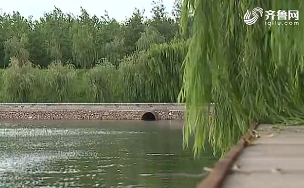 中央环保督察在山东丨山东现场督察重点整改227个水污染问题