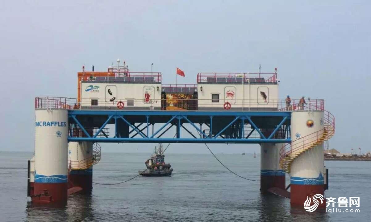 国内首座半潜式海洋牧场平台启用 作业水深可达30米