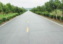 山东98%村庄通上公交车 曲阜梨园村农家乐收入多了十几倍