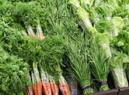 山东省食药监公布水产品、蔬菜等质量监督抽验结果