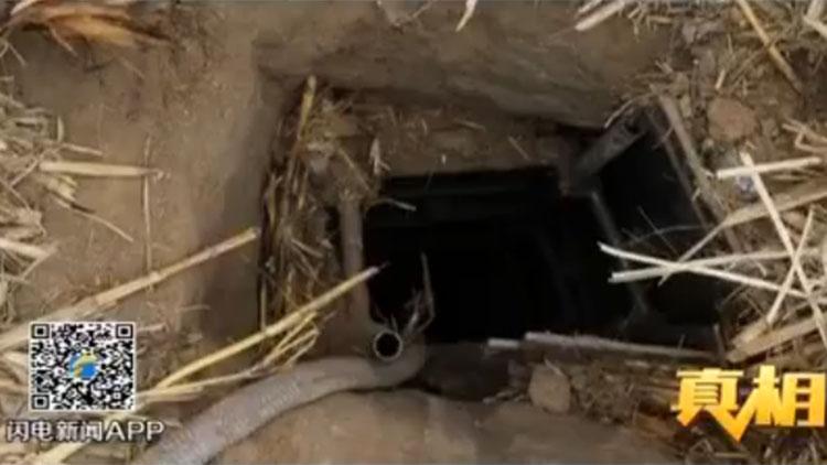 笨贼组团携洛阳铲定陶挖大墓,没找到墓门起争执被抓