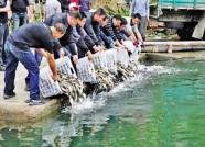 伏季休渔期正式结束 潍坊滨海区投放名贵苗种1.6亿尾